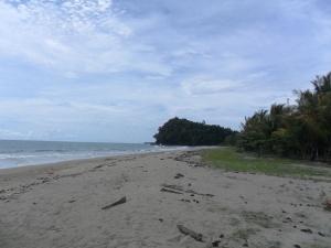 02. pesisir selatan