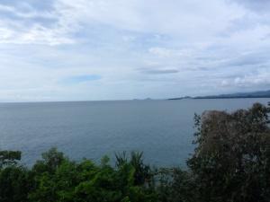 10. pesisir selatan